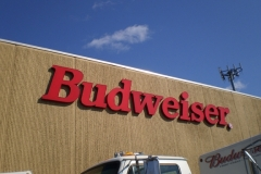 Channel Letters for Budweiser in NJ